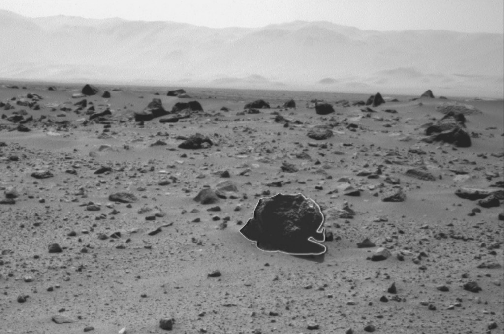GUINEA PIG ON MARS